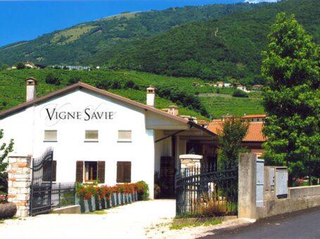 Vigne Savie