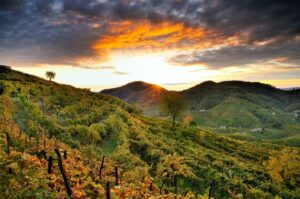 Le colline di Valdobbiadene